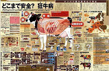 どこまで安全?狂牛病 (No.507):東京新聞 TOKYO Web
