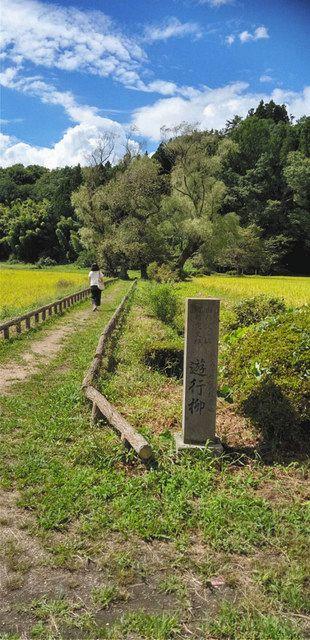 西行や芭蕉が立ち寄ったことで有名な歌枕・遊行柳=栃木県那須町芦野で