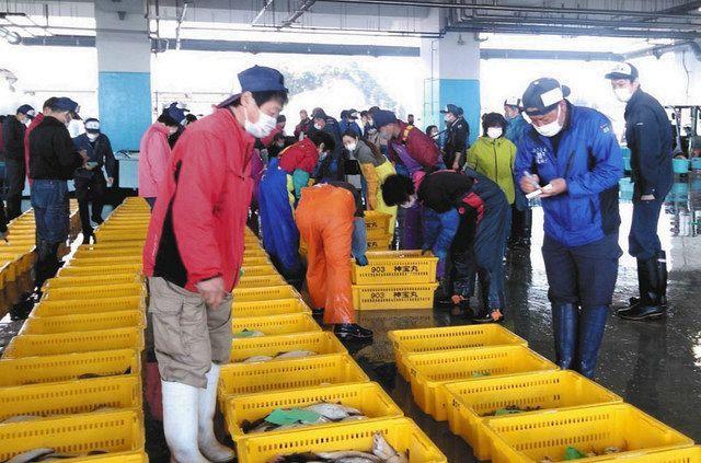 松川浦漁港で水揚げされたばかりの魚が次々と競りにかけられていく=福島県相馬市の相馬原釜地方卸売市場