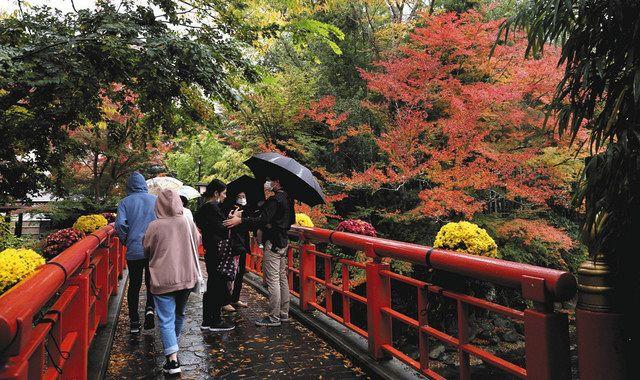 色づき始めた紅葉を楽しむ観光客=伊豆市で