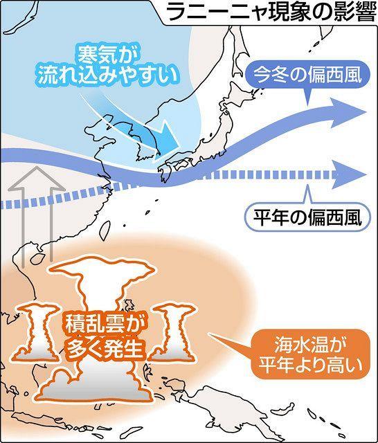 ラニーニャ現象 昨年よりも寒い冬に:東京新聞 TOKYO Web