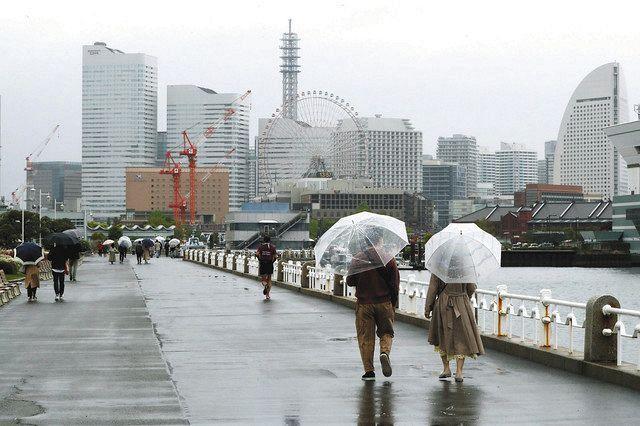 小雨が降り人影が少ない山下公園=横浜市中区で