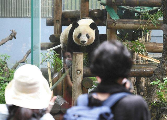 上野動物園予約