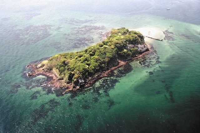横須賀市がトイレの建設費を計上した猿島。写真右側の桟橋近くが建設予定地=同市で(市提供)