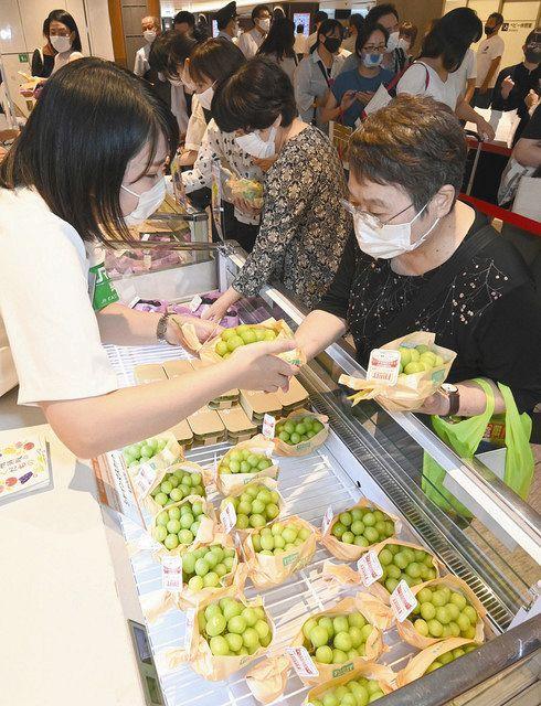 北陸新幹線で運ばれた長野県産のブドウを買い求める人たち=JR東京駅で