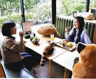 <新型コロナ>カピバラ相席で密回避 伊豆の動物園レストラン
